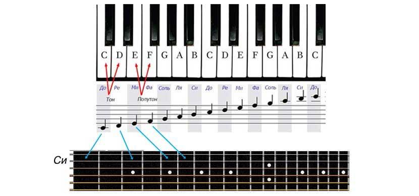 Как выглядит тон и полутон на фортепьяно